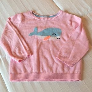 Whale Sweater (Baby)